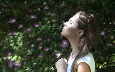 Scent your space and transport your mind into relaxation